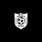http://www.srbijasport.net/img/klub/474/140